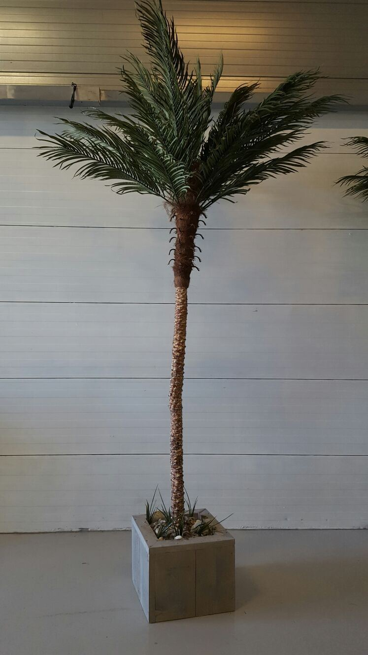 Kunstpalm Hawaii
